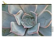 Succulent In Pastels Carry-all Pouch