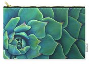 Succulent Study 2 Carry-all Pouch