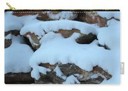 Suddenly Winter 2 Carry-all Pouch