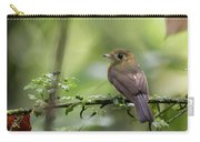 Sulphur-rumped Flycatcher Carry-all Pouch