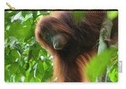 Sumatran Orangutan Pongo Abelii Two Carry-all Pouch