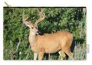 Summer Buck Carry-all Pouch