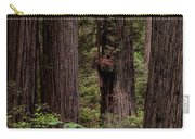 Summer In Redwood National Park Vertical Carry-all Pouch