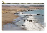 Summer In San Simeon Carry-all Pouch