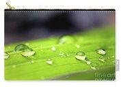 Summer Rain 2 Carry-all Pouch