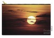 Sun 31 Carry-all Pouch