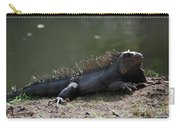 Sun Bathing Iguana Beside A Body Of Water Carry-all Pouch