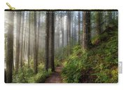 Sun Beams Along Hiking Trail In Washington State Park Carry-all Pouch