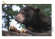 Sun Bear-7859 Carry-all Pouch