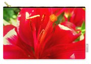Sun Dappled Lily Carry-all Pouch