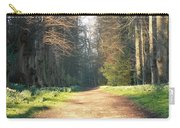 Sun On The Avenue Carry-all Pouch