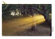 Sun Rays 2 Carry-all Pouch