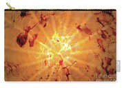 Sun Rays For Lori Carry-all Pouch