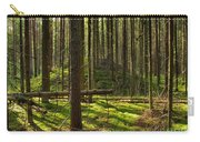 Sun Rays In Forest Carry-all Pouch