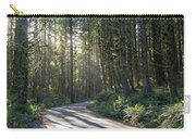 Sun Rays Through The Forest Carry-all Pouch
