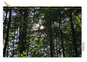 Sun Through Trees In Forest Carry-all Pouch