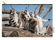 Sunbathing Ring-tailed Lemurs Carry-all Pouch