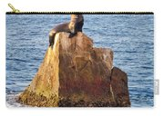 Sunbathing Sea Lion Carry-all Pouch