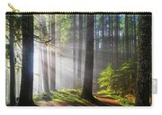 Sunbeams Along Hiking Trails Carry-all Pouch