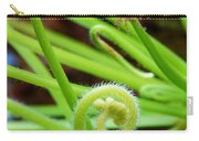 Sundew Drosera Capensis 4 Carry-all Pouch