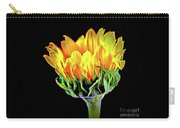 Sunflower 18-15 Carry-all Pouch