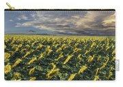 Sunflower Fields Near Denver International Airport Carry-all Pouch