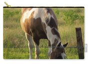 Sunkissed Tobiano Carry-all Pouch