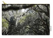 Sunlight And Shadows On Live Oaks Carry-all Pouch
