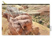 Sunlight On Colorful Boulder Above Wash 3 In Valley Of Fire Carry-all Pouch
