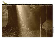 Sunlight On Swing - Sepia Carry-all Pouch