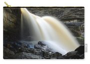 Sunlit Falls Carry-all Pouch