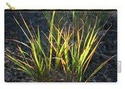 Sunlit Grass Carry-all Pouch