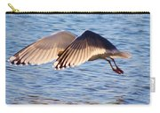 Sunlit Gull Wings Carry-all Pouch