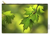 Sunlit Maple Leaves In Spring Carry-all Pouch