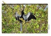 Sunning Anhingas Bird One Carry-all Pouch