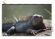 Sunning Gray Iguana Sitting Beside Water Carry-all Pouch