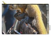Sunning Squirrel Carry-all Pouch