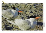 Sunning Terns Carry-all Pouch