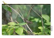 Sunning Zebra Longwing Butterfly Carry-all Pouch