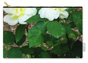 Sunny Knockout Carry-all Pouch