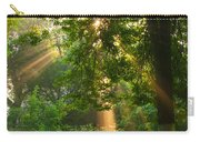 Sunny Rays Carry-all Pouch