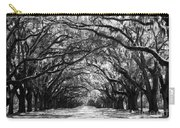 Sunny Southern Day - Black And White With Black Border Carry-all Pouch