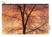 Sunrise December 16th 2010 Carry-all Pouch by James BO  Insogna