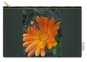 Sunset Daisy Carry-all Pouch