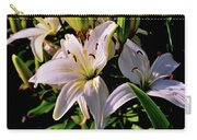 Sunset Lilies Carry-all Pouch