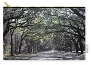 Sunshine On Live Oaks Carry-all Pouch
