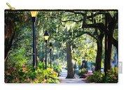 Sunshine On Savannah Sidewalk Carry-all Pouch