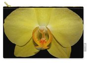 Sunshine Reflection Carry-all Pouch