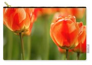 Sunsoaked Tulips #6 Carry-all Pouch