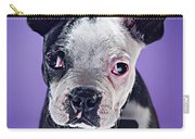 Super Pets Series 1 - Bugsy Close Up Carry-all Pouch